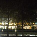 Passeio nocturno pelo Parque das Nações